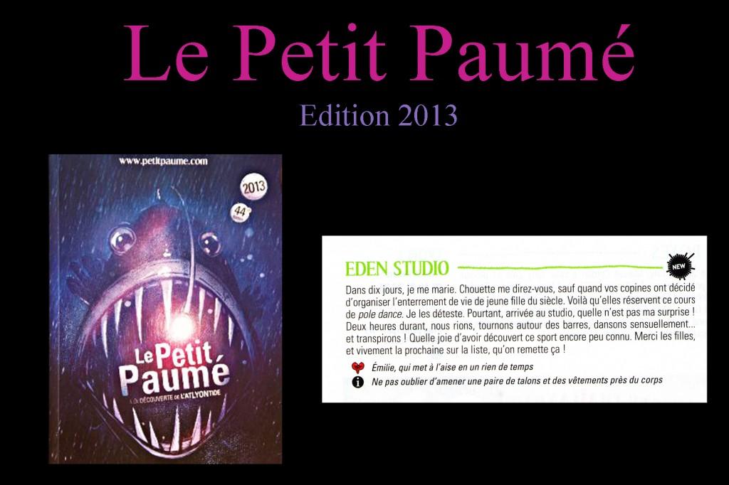 visuel website petitpaumé 2013